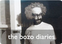 the bozo diaries